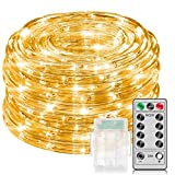Govee Minger 33Ft Warm White Rope Lights with Remote Control, Dimmable Fairy Lights Waterproof 8 Mode/Timer Copper Wire String Lights for Christmas, Holiday, Party, Decoration, Battery Powered