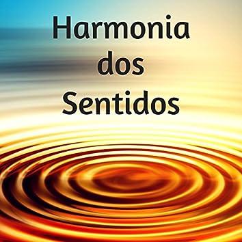 Harmonia dos Sentidos - Musicas de Fundo para Esturar e Preparar Examenes