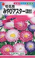 株式会社トーホク 切花用みやびアスター(混合) 04372