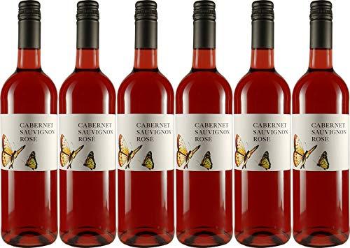 Volker Klein Cabernet Sauvignon Rosé 2019 Feinherb Bioland Bio (6 x 0.75 l)
