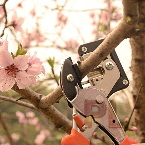 Greffe semis outils de jardin couteau à greffer Home Garden outils Accessoires Livraison gratuite