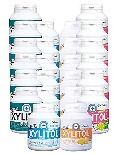 ロッテ キシリトールガム ボトルタイプ90粒 × 24個 (マスカット,アップルミント,クリアミント,オレンジ)各味6個ずつ