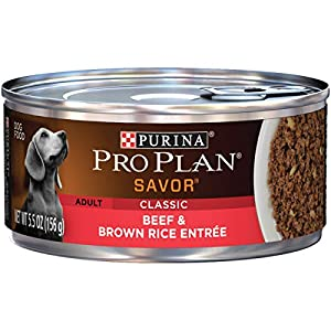 Purina Pro Plan Pate Wet Dog Food, SAVOR Classic Beef & Brown Rice Entree – (24) 5.5 oz. Cans