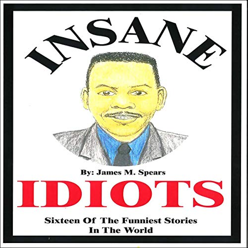 Insane Idiots cover art