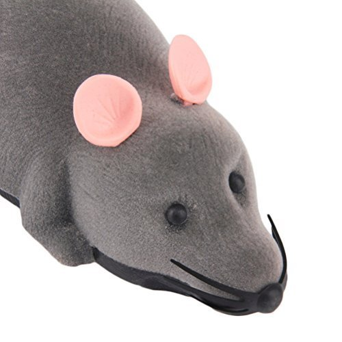 Cat Mice & Animals Toys