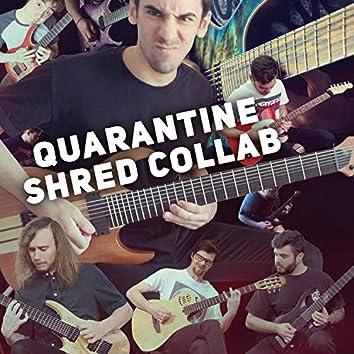 Quarantine Shred Collab