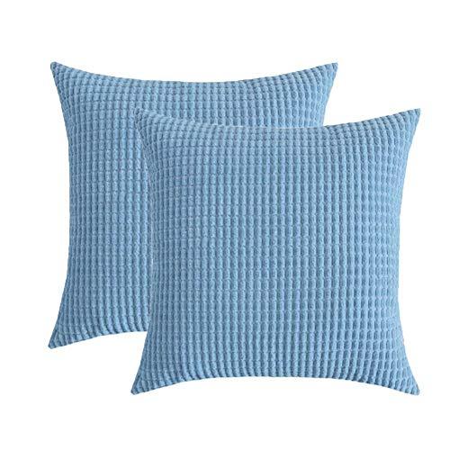 Toruiwa - 2 fundas de cojín (40 x 40 cm, terciopelo, decorativas, funda de almohada para decoración del hogar, dormitorio, salón, oficina, color beige 40 x 40 cm), azul, 40 x 40 cm