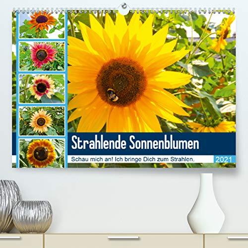 Strahlende Sonnenblumen (Premium, hochwertiger DIN A2 Wandkalender 2021, Kunstdruck in Hochglanz)