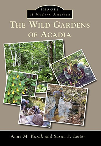 The Wild Gardens of Acadia (Images of Modern America)