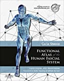 Functional Atlas of the Human Fascial System E-Book (English Edition)