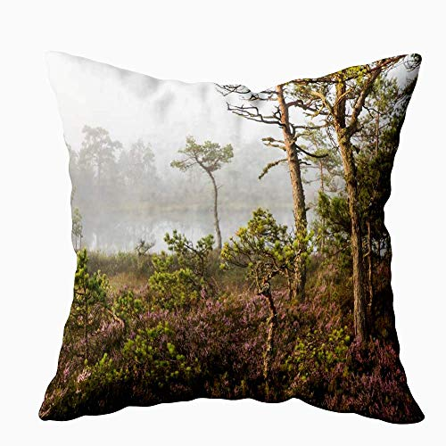 N\A Pillow Case, Square Throw Pillowcase Covers Misty Morning Landscape with The Flowering Heather Woodland and Lake in Nature Reserve County Both Sides Farmhouse Decor Cushion