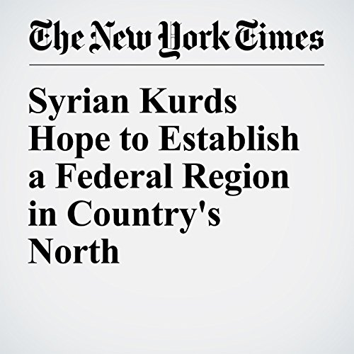 Syrian Kurds Hope to Establish a Federal Region in Country's North cover art