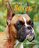training your boxer dog