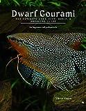 Dwarf Gourami: The Ultimate Care, Diet, Setup, &...