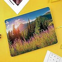 iPad Pro 10.5 ケース/iPad Air 2019 ケース(Air3)高級ソフトPUレザー製 iPad 10.5 カバー オートスリープ&スタンド機能付き ひび割れ防止 防衝撃デザイン 手帳型10.5インチタブレットスマートケース カバー花と山の秋の風景写真高山木日の出森