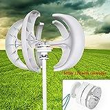 FLYHERO Wind Turbine Generator, 5 Blades Wind Turbine Lanterns Generator Vertical Axis Controller 600W 12 V (White 12v)