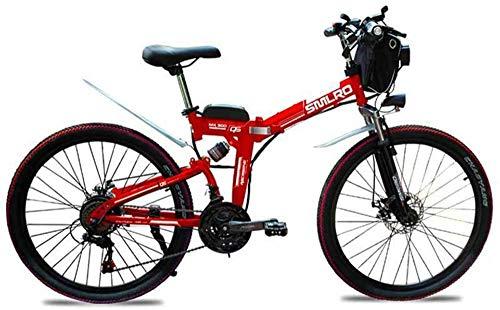 Fangfang Bicicletas Eléctricas, 26
