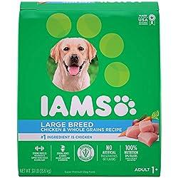 IAMS Proactive Health High Protein Large Breed Dry Dog Food