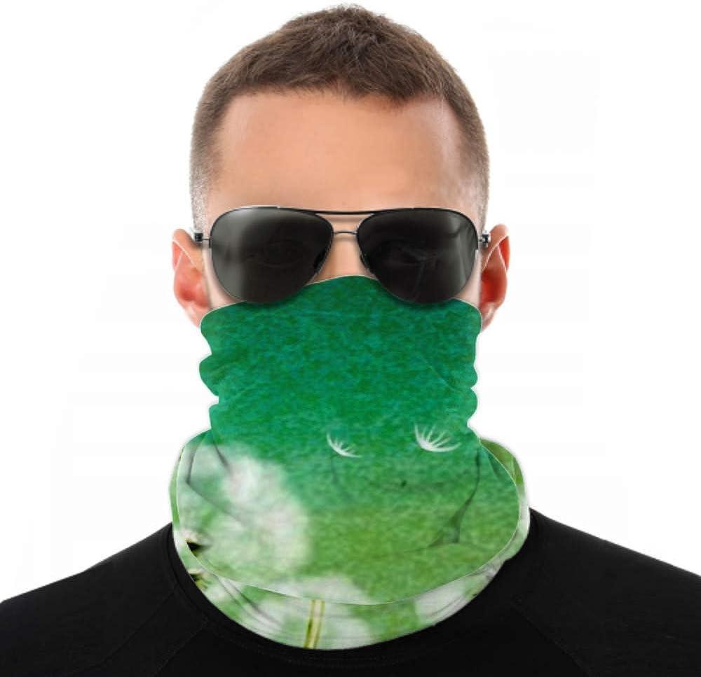 Headbands For Men Women Neck Gaiter, Face Mask, Headband, Scarf Abstract Background Flower Dandelion Turban Multi Scarf Double Sided Print Women Head Wraps For Sport Outdoor