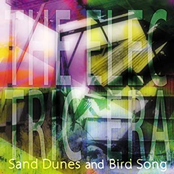 Sand Dunes and Bird Song