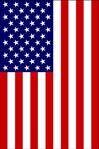 SafeGlo 22' Telescoping Flag Pole Kit w/ Ladder Mount For Motorhome With USA Flag