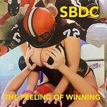 The Feeling of Winning