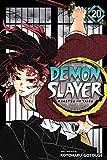 Demon Slayer: Kimetsu no Yaiba, Vol. 20: The Path Of Opening A Steadfast Heart (English Edition)