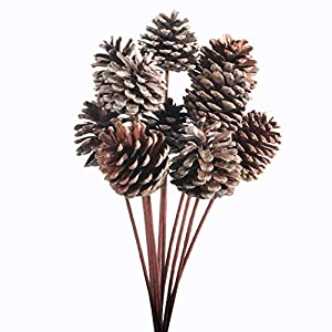 JAROWN 10pcs Pine Cones Dried Plants Flowers Iron Stems Artificial Branches Fall Winter Christmas Home Vase Bowl Filler Display Crafts Decor