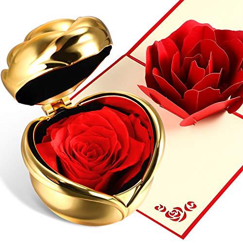 Chengu Never Withered Eternal Rose Forever Rose Konservierte Blume Rose mit Geschenkbox und 3D Pop Up Rose Grußkarte für Valentinstag, Jahrestag, Geburtstag, Muttertag Red with Gold