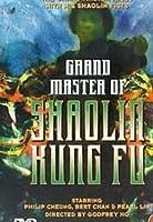Grand Master of Shaolin Kung Fu [DVD]