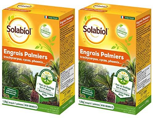 Maisange Solabiol - Engrais Palmiers 3kg - Nutrition Longue durée pour Un Feuillage Fort et Dense - SOPALMY15