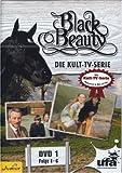 Black Beauty, Teil 01 - Judi Bowker