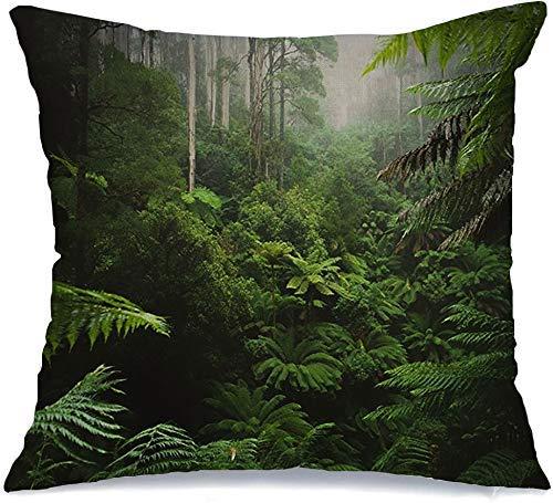 Funda de Cojine Throw CojínBosque verde Mañana Árbol Niebla Naturaleza Parques Australia Diseño al aire libre Planta húmeda Verano Natural Fundas para almohada 45X45CM