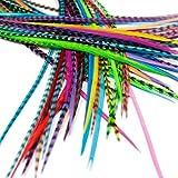 25extensions de véritables plumes pour cheveux: courtes et fines, 18-23 cm avec des anneaux et une boucle.