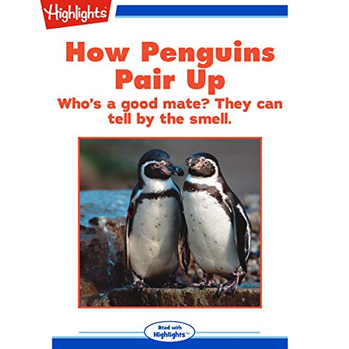 How Penguins Pair Up copertina