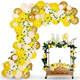 Sunflower Lemonade Party Balloon Garland Kit, Yellow Pastel Yellow Balloons Garland Kit Ideal for Sunflower Lemonade Stand Baby Bridal Shower Birthday Party Decorations