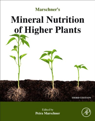 Marschner's Mineral Nutrition of Higher Plants (English Edition)