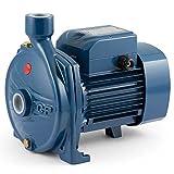 Elettropompa CP Centrifuga CPm150 1Hp Acciaio 220V Pompa Acqua Pedrollo