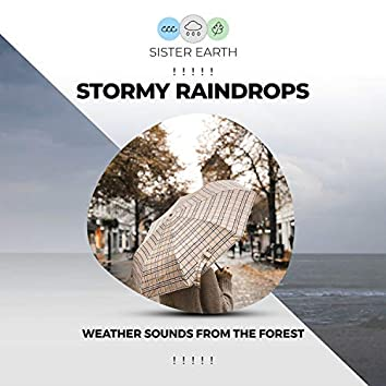 ! ! ! ! ! Stormy Raindrops Weather Sounds from the Forest ! ! ! ! !
