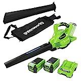 Greenworks Tools 24227UC 40 V Laubgebläse und Sauger inklusive 2 Akkus 2Ah und Ladegerät, grün, Laubbläser