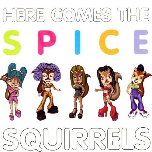 Spice Squirrels
