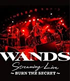 WANDS Streaming Live 〜BURN THE SECRET〜[GZXD-8001][Blu-ray/ブルーレイ]