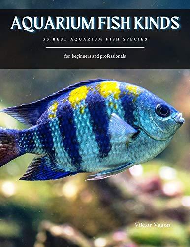 AQUARIUM FISH KINDS: 50 Best Aquarium Fish Species