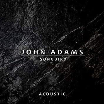 Songbird (Acoustic)