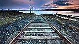 ZDXFG 3000 pièces Puzzle Classique Puzzle Adulte et Enfant Jeux Éducatifs Idéaux pour Détente Méditation Loisirs -Chemin de fer abandonné