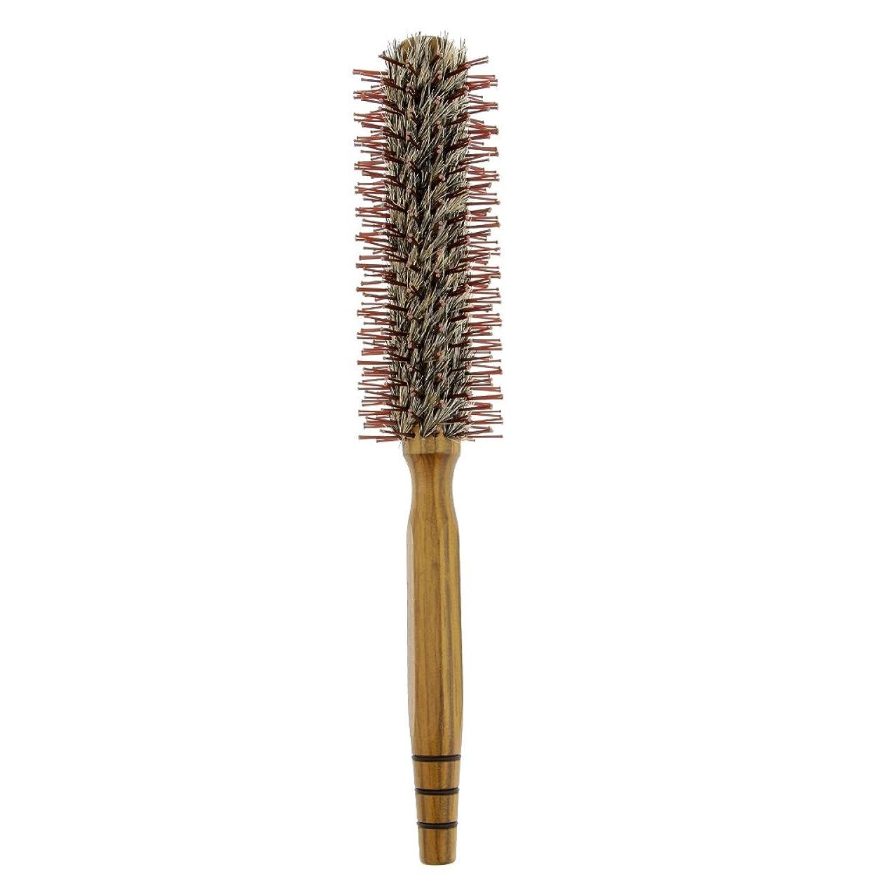 関連する優遇口述CUTICATE ロールブラシ ヘアコーム 木製櫛 家庭用 サロン 美容師 3サイズ - M