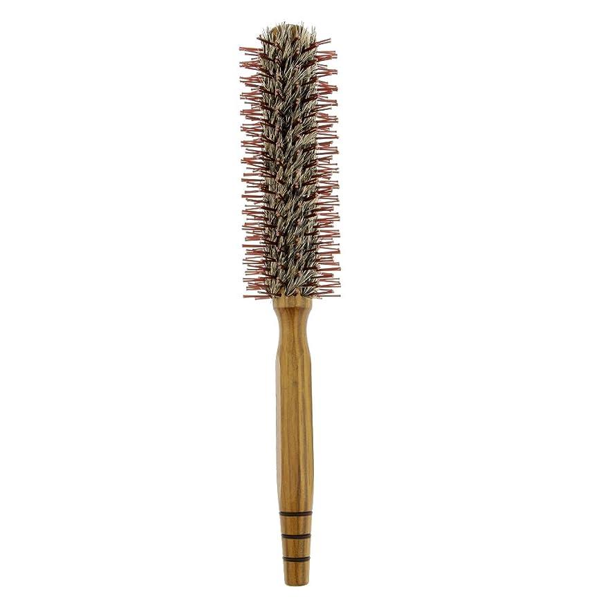 フィッティング致命的な着替えるCUTICATE ロールブラシ ヘアコーム 木製櫛 家庭用 サロン 美容師 3サイズ - M