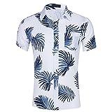 CATERTO Men's Tropical Short Sleeve Floral Print Beach Aloha Hawaiian Quick Dry Shirts, Print12, Medium
