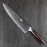 HAOYE Cuchillo de Chef de Damasco Cuchillo de Cocina Japonés de 25cm VG10 en Acero de Profesional Damasco Cuchillo de Cocina,Hoja Alargadora,Filo Permanente,Mango de Palo de Rosa