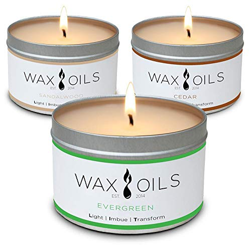 Scented Candles - Cedar, Evergreen & Sandalwood (Pack of 3) Soy Candles Aromatherapy, 8oz